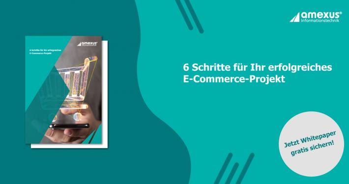 E-Commerce-Whitepaper amexus